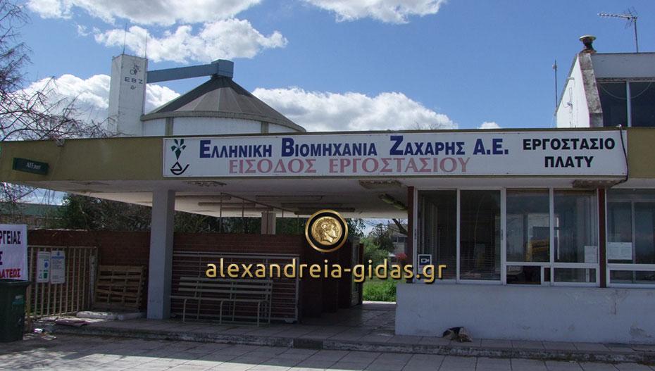 """Η Τράπεζα Πειραιώς """"σώζει"""" την ΕΒΖ και το 2020 προβλέπεται να ανοίξει το εργοστάσιο στο Πλατύ"""