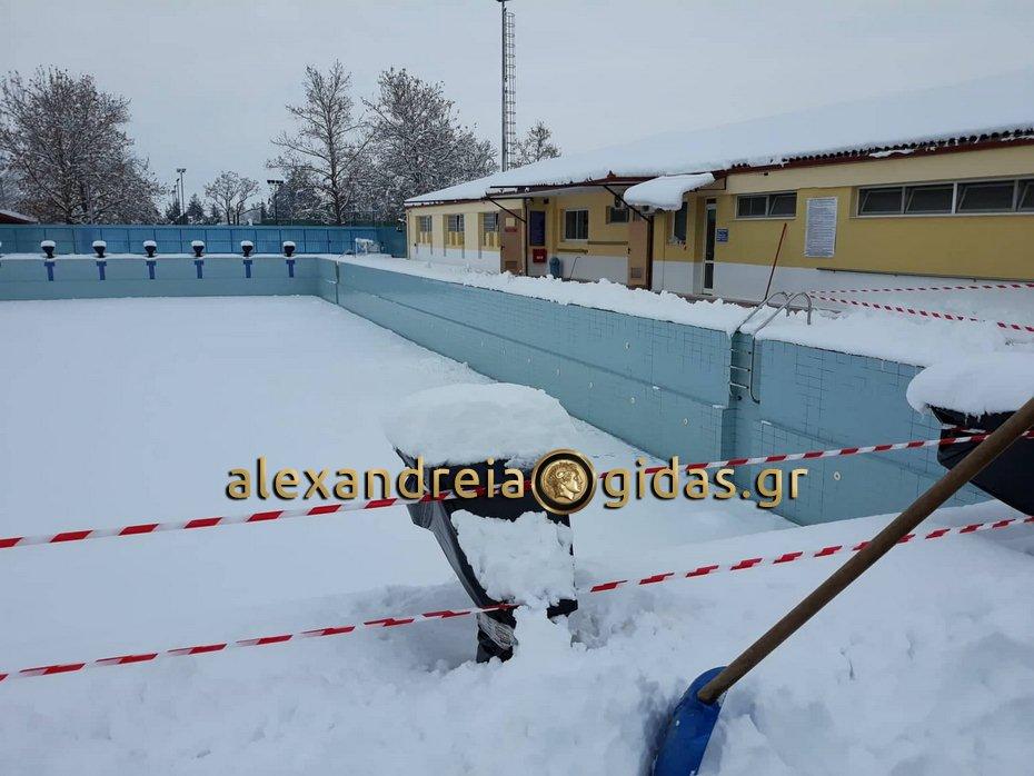 Τα χιόνια ματαίωσαν τη ρίψη του Σταυρού αύριο Θεοφάνεια στο κολυμβητήριο Αλεξάνδρειας
