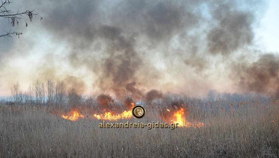 Ο δήμος Αλεξάνδρειας για τις πυρκαγιές που εκδηλώνονται στην περιοχή. Τι απαγορεύεται
