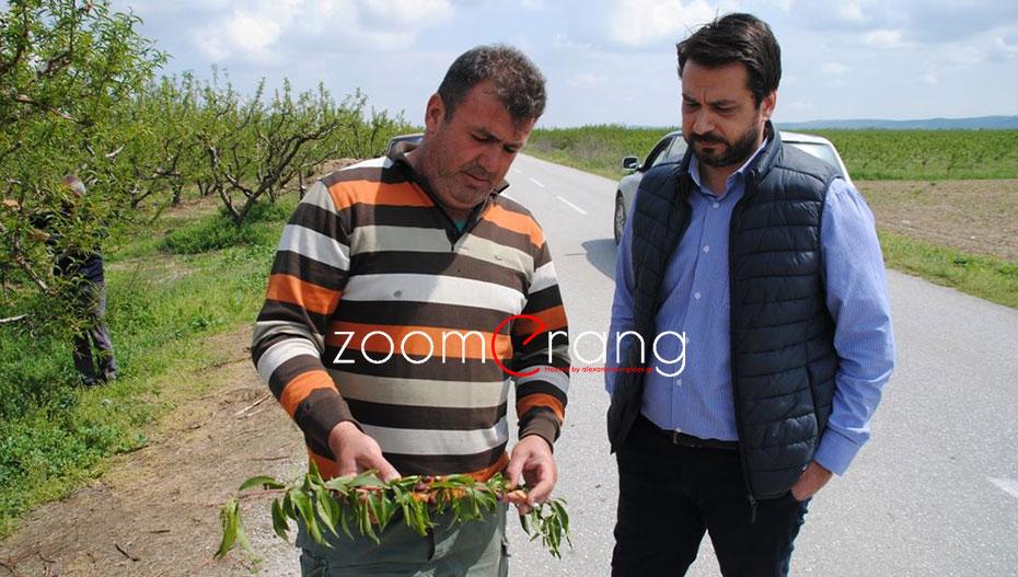 Τάσος Μπαρτζώκας: «Αυτό απαιτούν από τον ΕΛΓΑ οι αγρότες οι αγρότες της Ημαθίας»